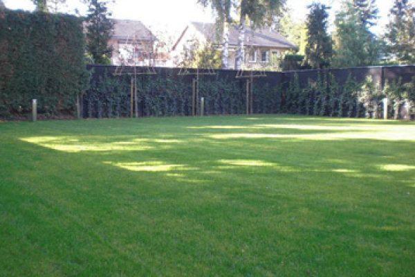 tuinbeplanting-joris-dings-tuinbeleving-baarlo